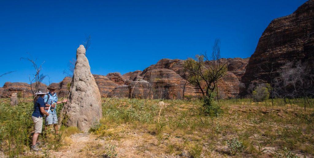 Bungles Termite Mound