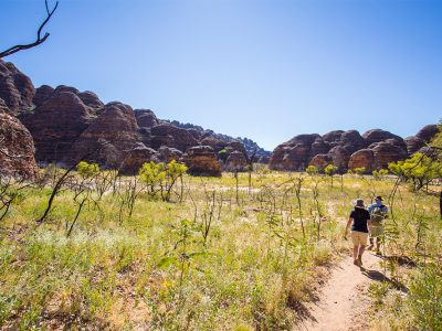 Walking the Bungles