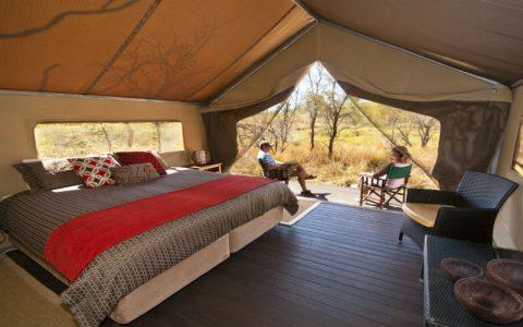 Bungles Tent