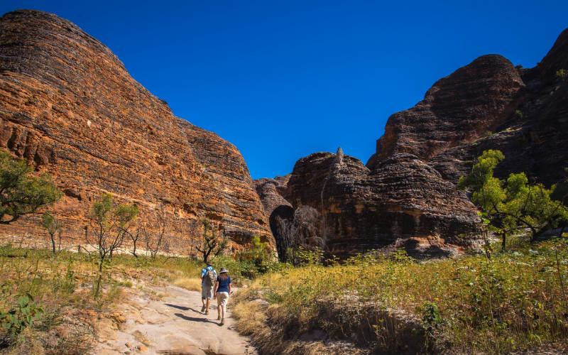 Bungles Walking