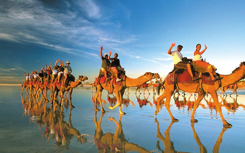 Cable Beach Camels