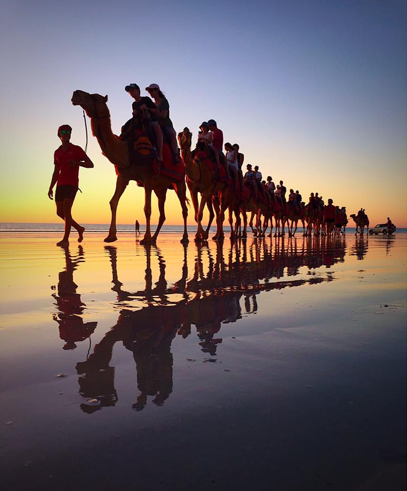 Cruise Ship Sunset Camels