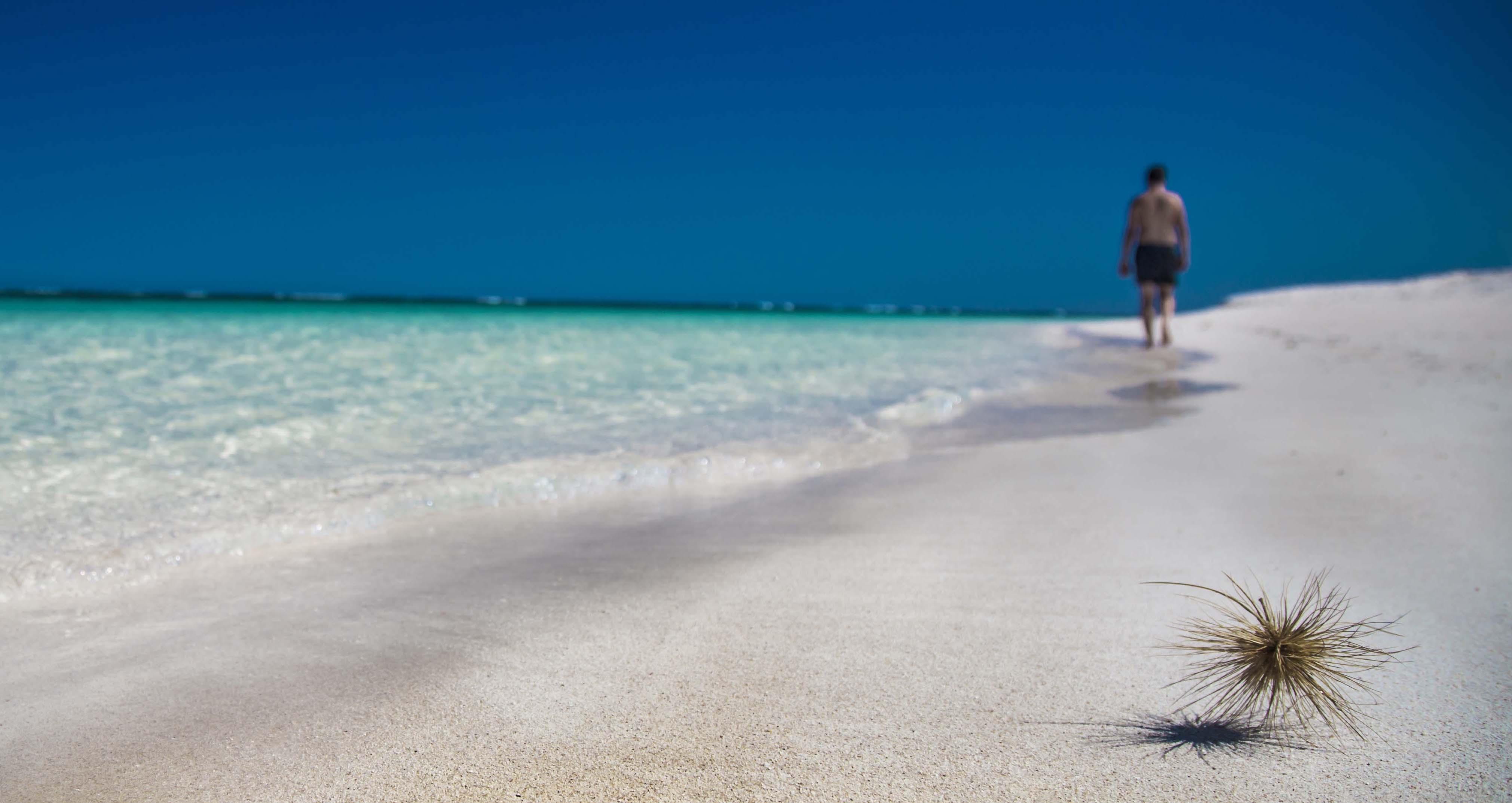 Ningaloo Beach